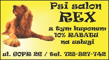 Kupon rabatowy -10% na usługi w Psim Salonie REX